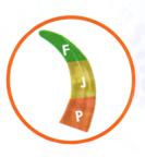 Freedom and Justice Party (FJP) logo